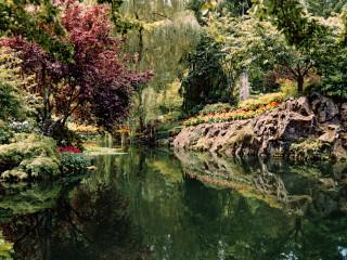 Garden Wonderland