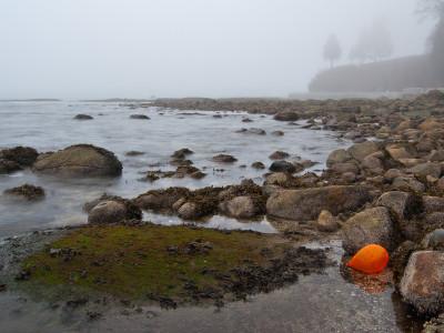 Orange Balloon Floating