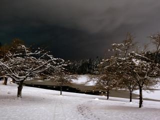 Stillness at Winter's Night 1