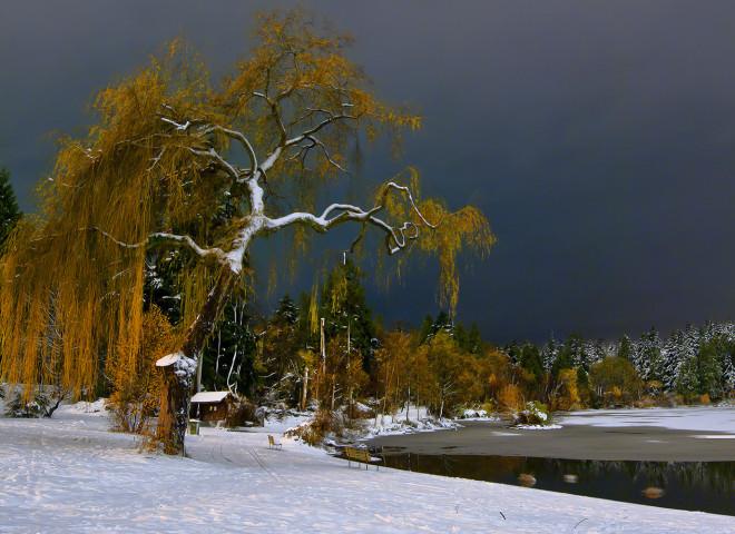 Stillness at Winter's Night 4