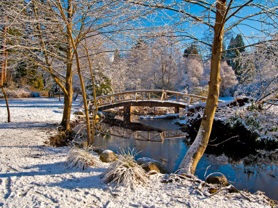 Wooden Bridge in Snow