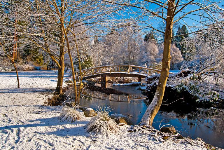 Wooden Bridge in Snow
